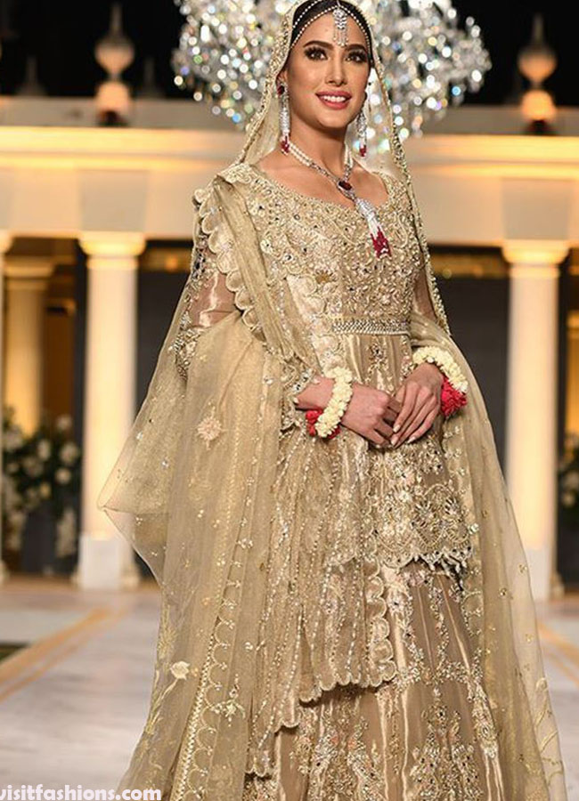Latest Bridal Dresses In Pakistan For Wedding In 2020,Plus Size Wedding Dresses Under 300